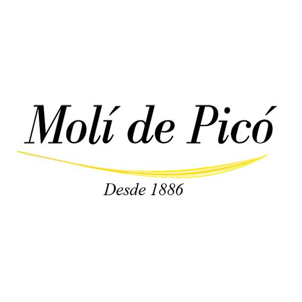 Logo Moli de Pico 1 - Molí de Picó