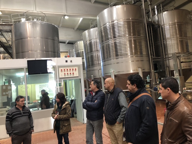 IMG 2416 - Visita Empresarial Bodega Hoya de Cadenas